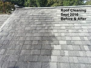 roof-cleaning-sept-2016